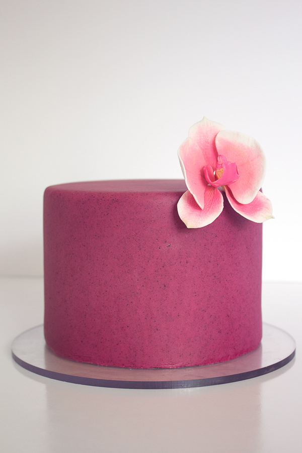 Delicious Homemade Blueberry Almond Fondant. Made with all natural organic blueberries, and no artificial